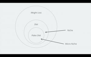 Niche Market vs Micro Niche Market